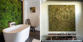 Moss Walls: The Interior Design Trend That Turns Your Home Into A Forest