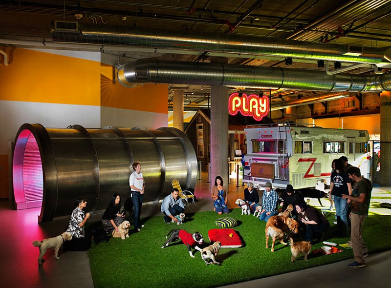 AD-The-Coolest-Offices-On-The-Planet-You'll-Wish-You-Worked-At-10-1