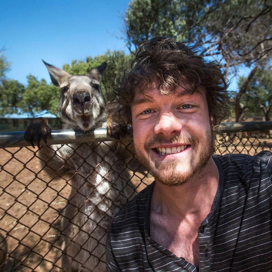 AD-Allan-Dixon-Funny-Animal-Selfies-04