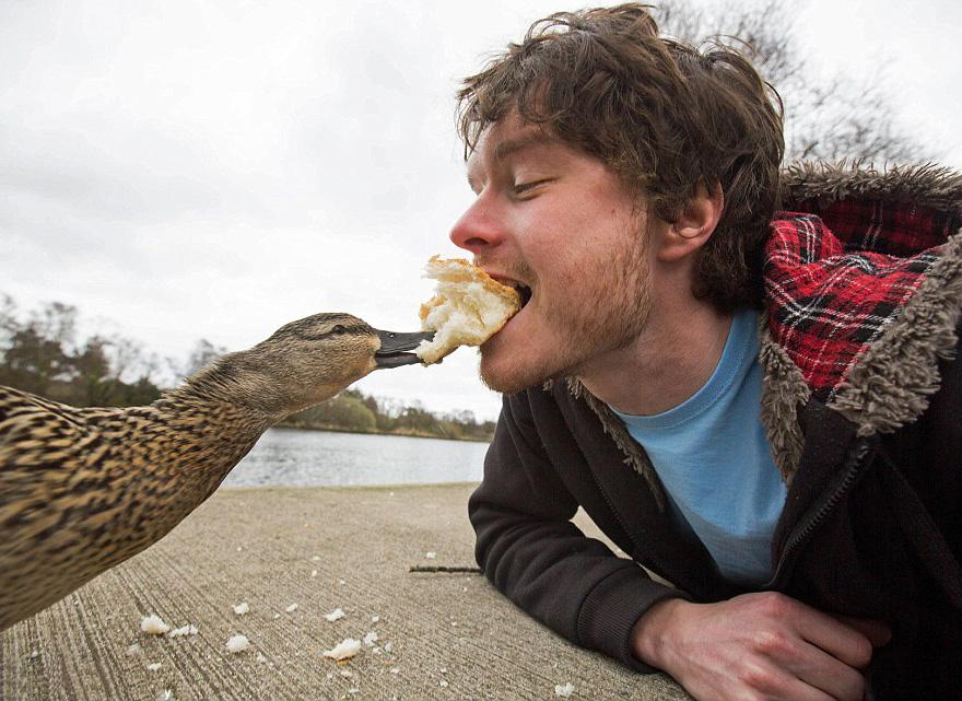 AD-Allan-Dixon-Funny-Animal-Selfies-06
