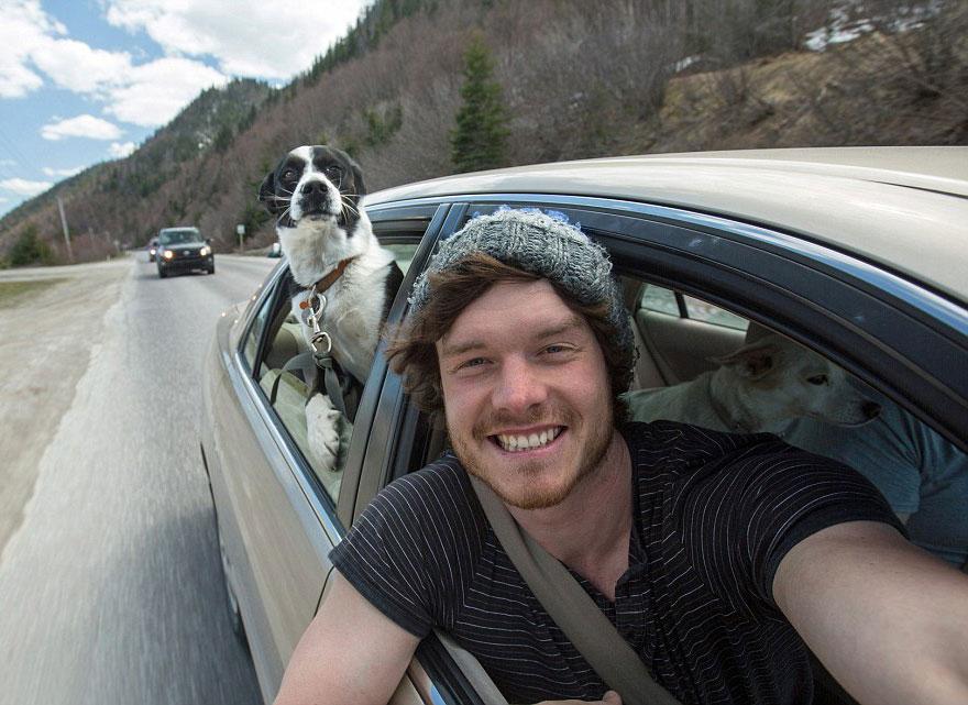 AD-Allan-Dixon-Funny-Animal-Selfies-07