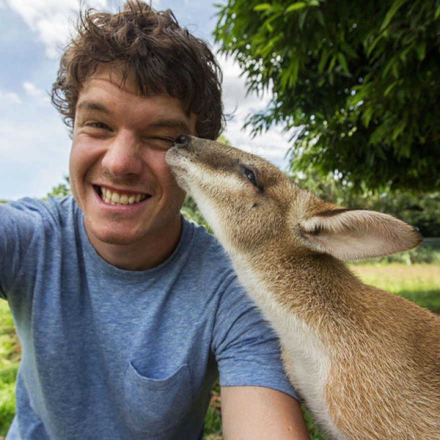 AD-Allan-Dixon-Funny-Animal-Selfies-08