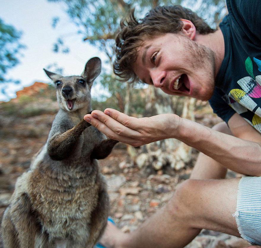 AD-Allan-Dixon-Funny-Animal-Selfies-11