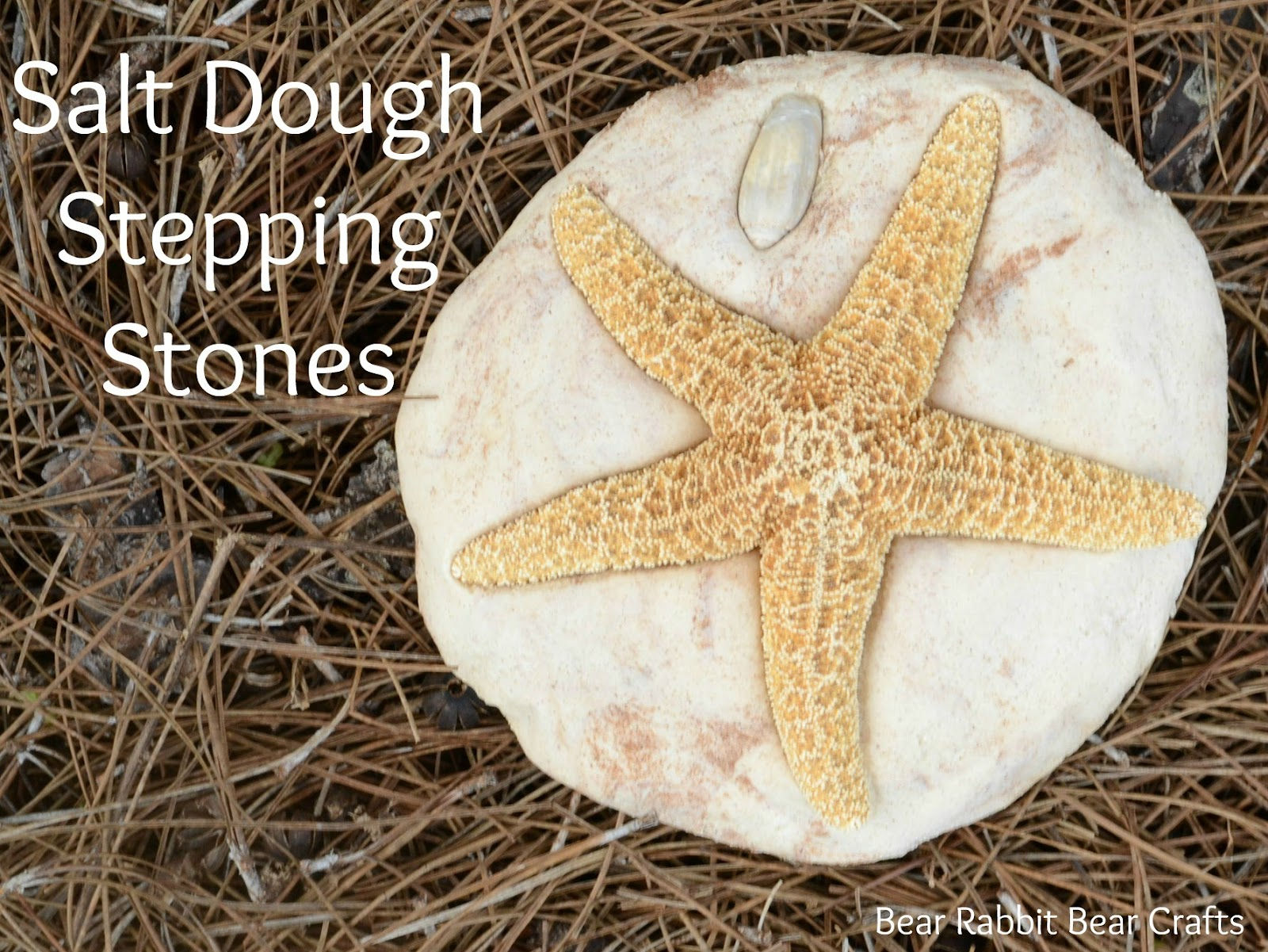 AD-Beautiful-DIY-Stepping-Stone-Ideas-To-Decorate-Your-Garden-25