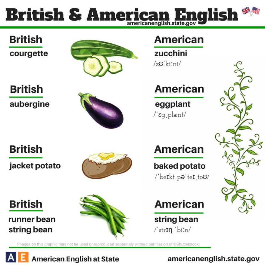 cultural differences american and british governmental How to understand the differences between british and american english the united kingdom's international organisation for cultural relations and educational.