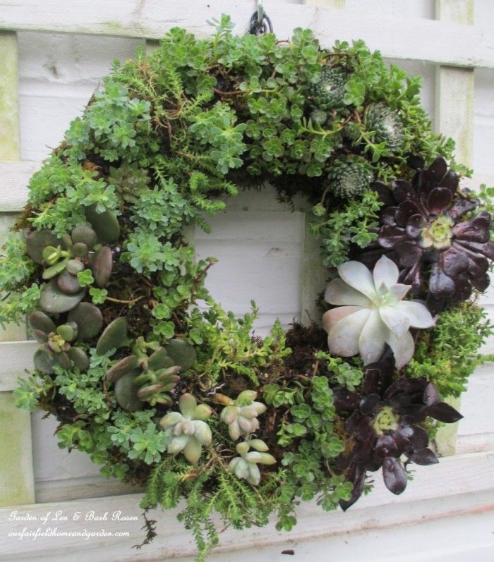 AD-Creative-DIY-Vertical-Gardens-For-Your-Home-09