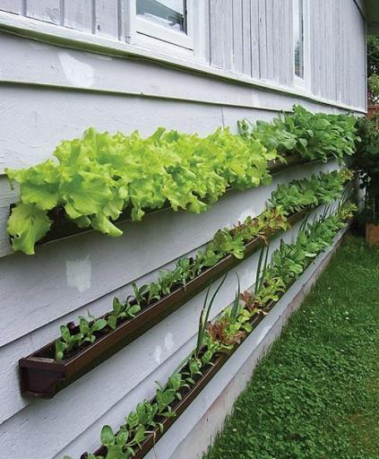 ad creative diy vertical gardens for your home - Vertical Vegetable Garden Design