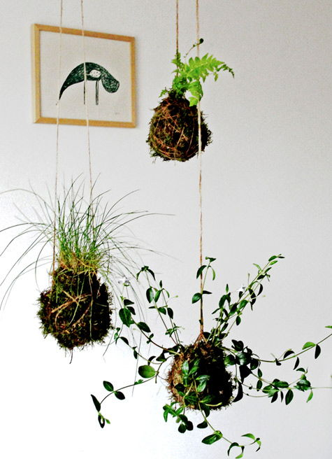 AD-Creative-DIY-Vertical-Gardens-For-Your-Home-14