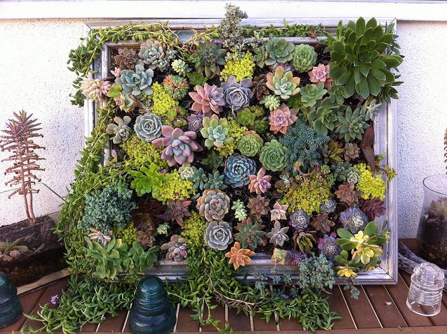 Amazing AD Creative DIY Vertical Gardens For Your Home