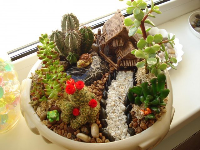 AD-DIY-Ideas-How-To-Make-Fairy-Garden-11