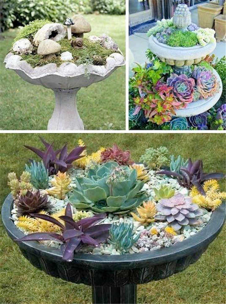 30 diy ideas how to make fairy garden architecture design for Ideas for pictures