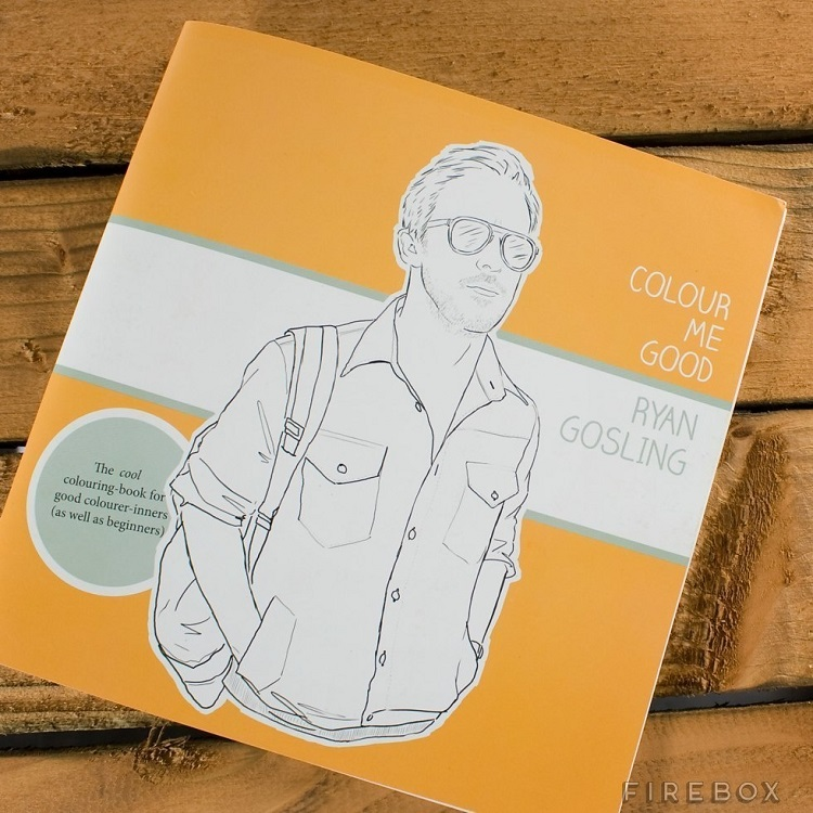 A Coloring Book For All The Ryan Gosling Groupies AD Hilarious Christmas Gag Gifts 04
