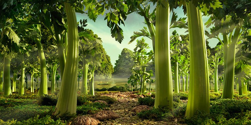AD-Carl-Warner-Can-Make-Landscapes-Out-Of-Anything-20
