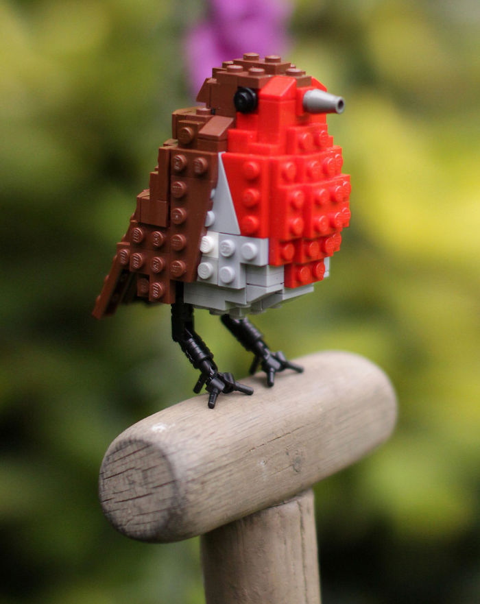 AD-Creative-Gift-Ideas-For-Bird-Lovers-25
