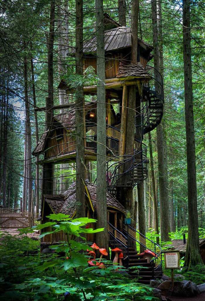 AD-The-Most-Beautiful-Treehouses-From-All-Over-The-World-01