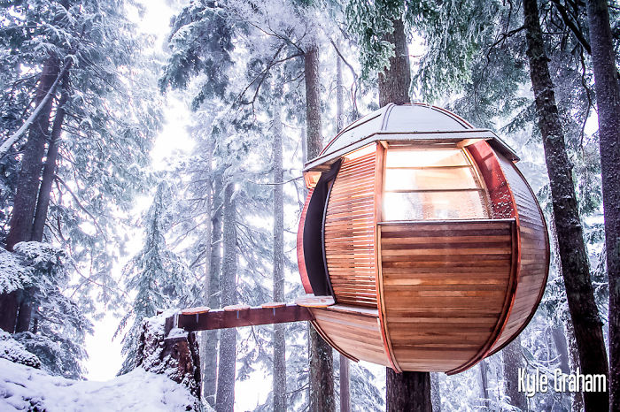 AD-The-Most-Beautiful-Treehouses-From-All-Over-The-World-07
