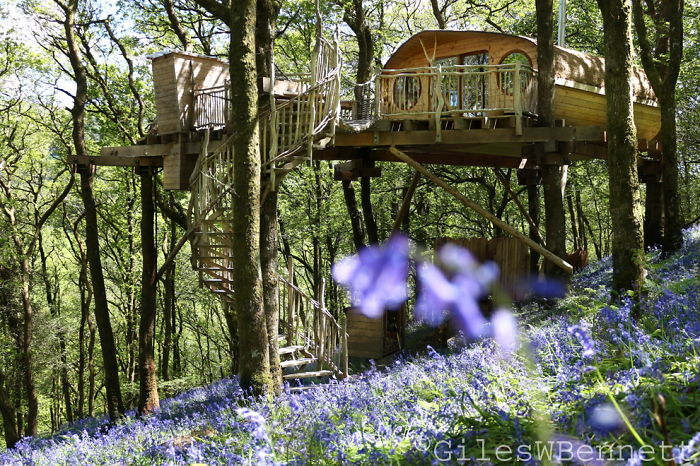 AD-The-Most-Beautiful-Treehouses-From-All-Over-The-World-09