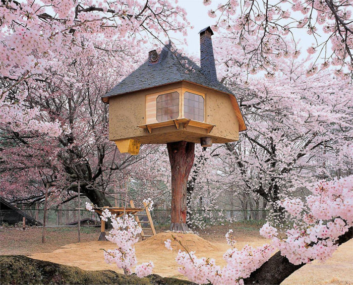 AD-The-Most-Beautiful-Treehouses-From-All-Over-The-World-10