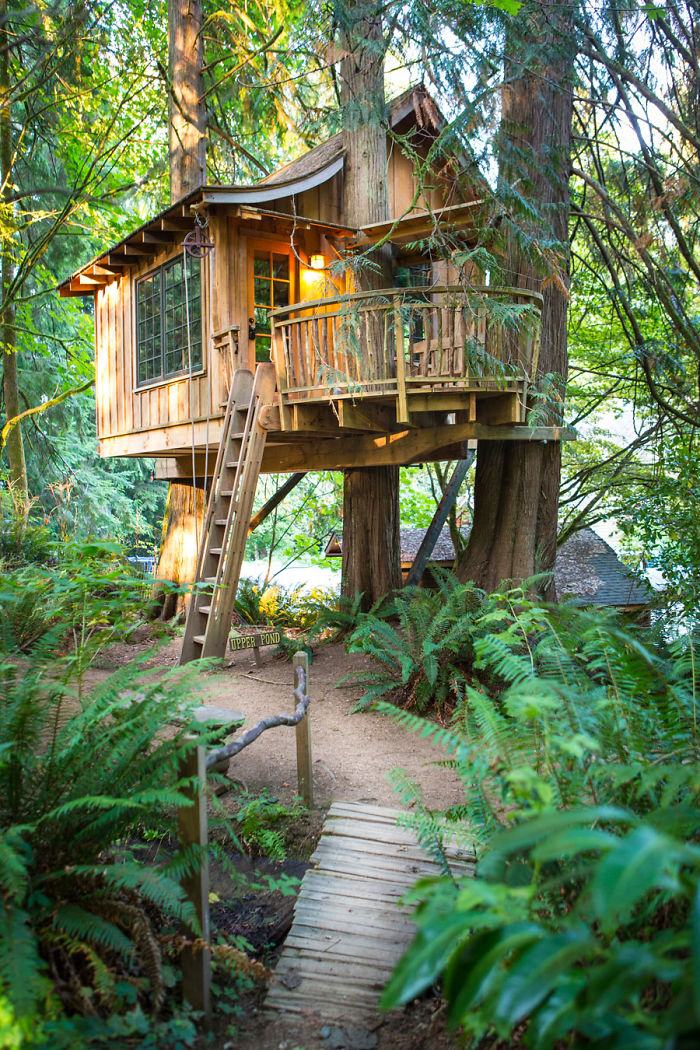 AD-The-Most-Beautiful-Treehouses-From-All-Over-The-World-11