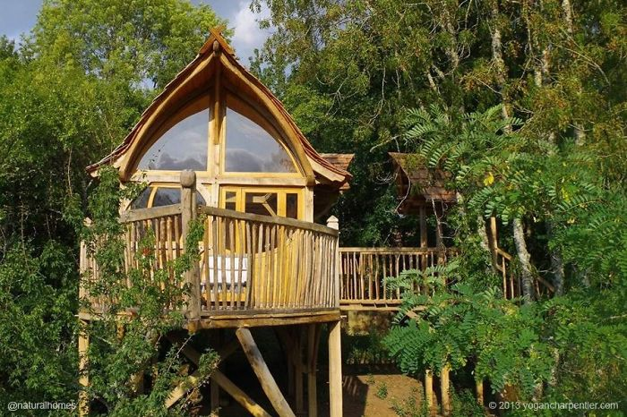 AD-The-Most-Beautiful-Treehouses-From-All-Over-The-World-16