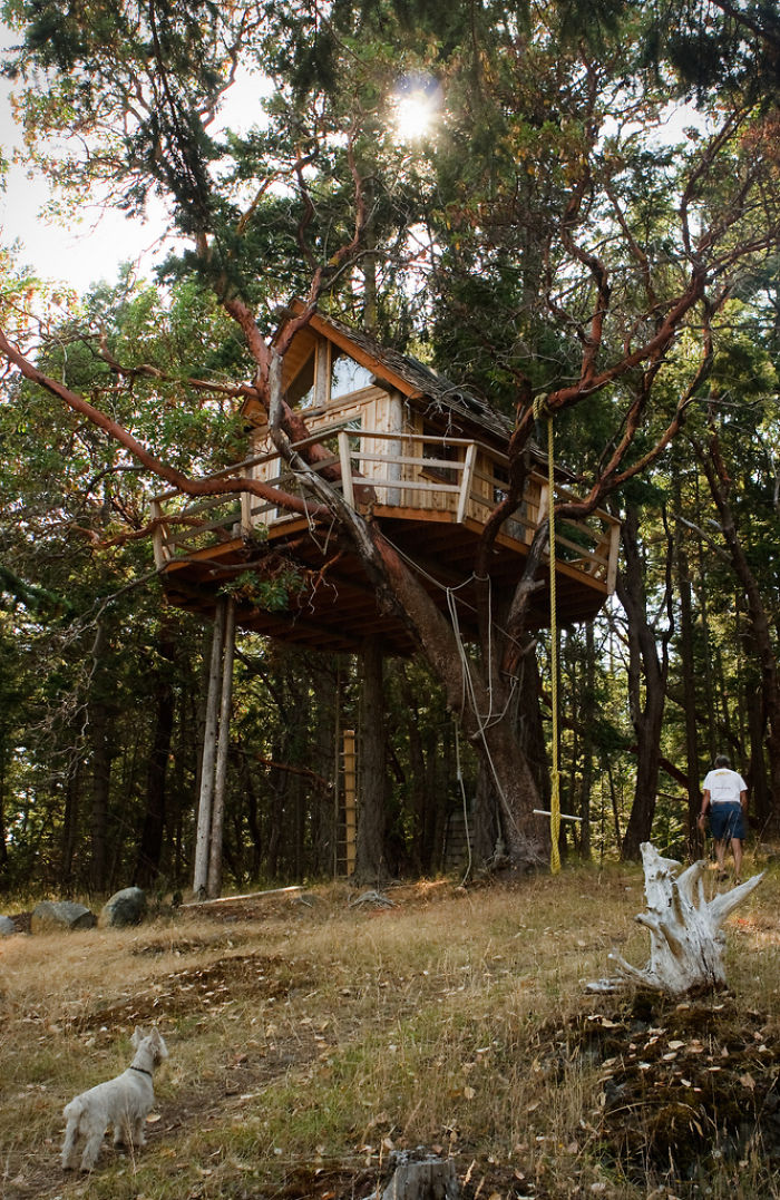 AD-The-Most-Beautiful-Treehouses-From-All-Over-The-World-19
