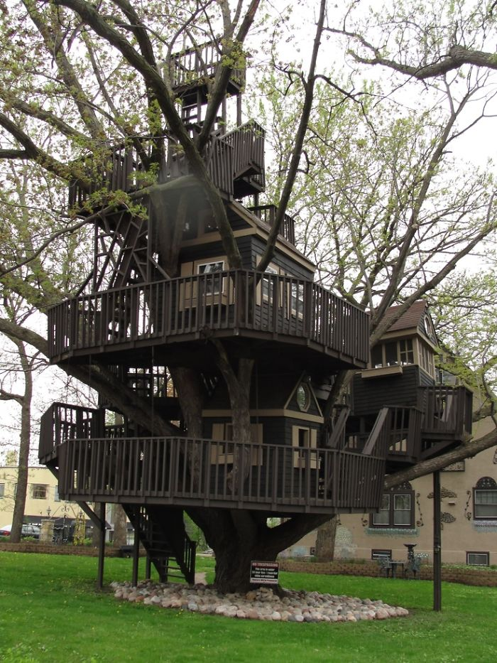 AD-The-Most-Beautiful-Treehouses-From-All-Over-The-World-22
