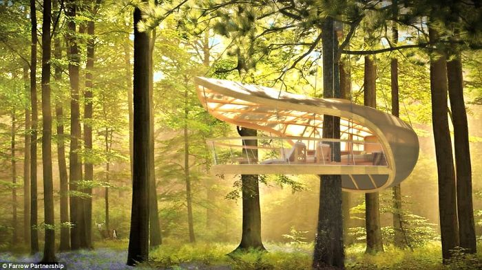 AD-The-Most-Beautiful-Treehouses-From-All-Over-The-World-27