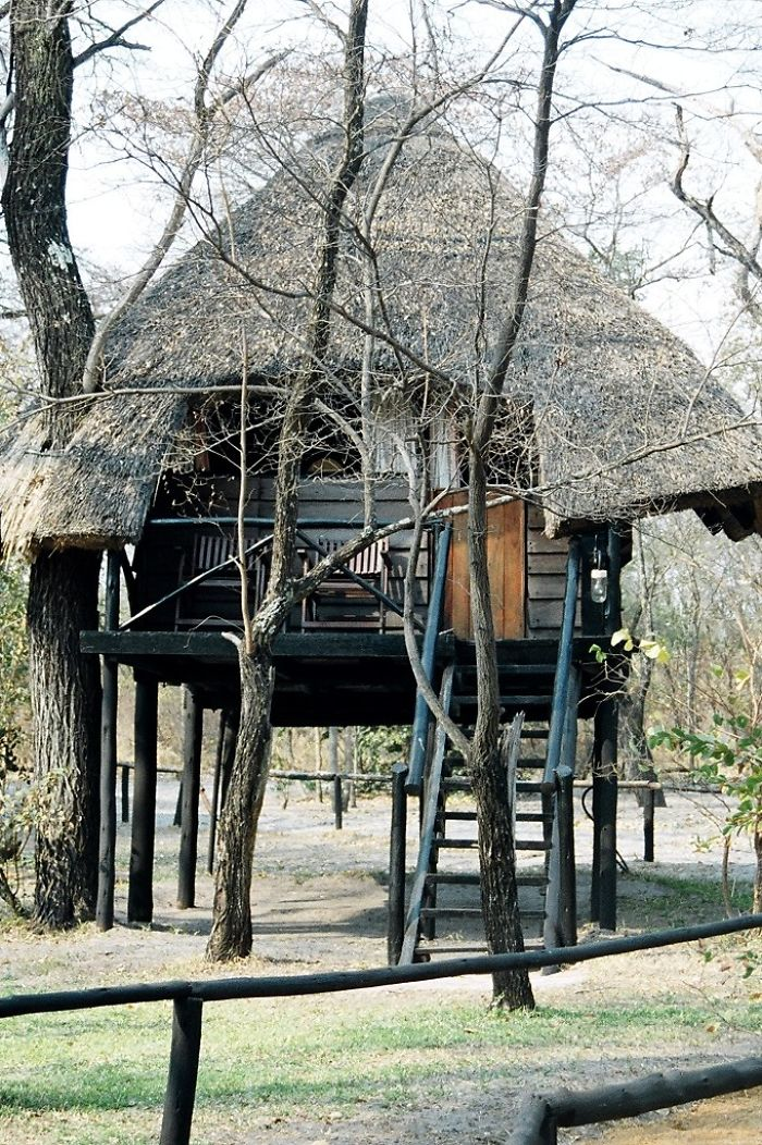 AD-The-Most-Beautiful-Treehouses-From-All-Over-The-World-31