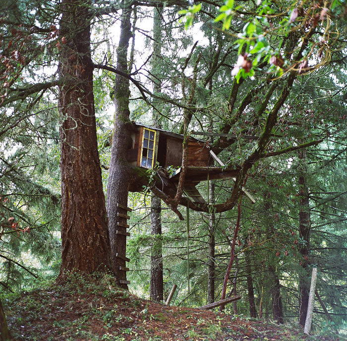 AD-The-Most-Beautiful-Treehouses-From-All-Over-The-World-36