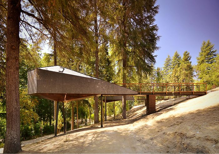 AD-The-Most-Beautiful-Treehouses-From-All-Over-The-World-56