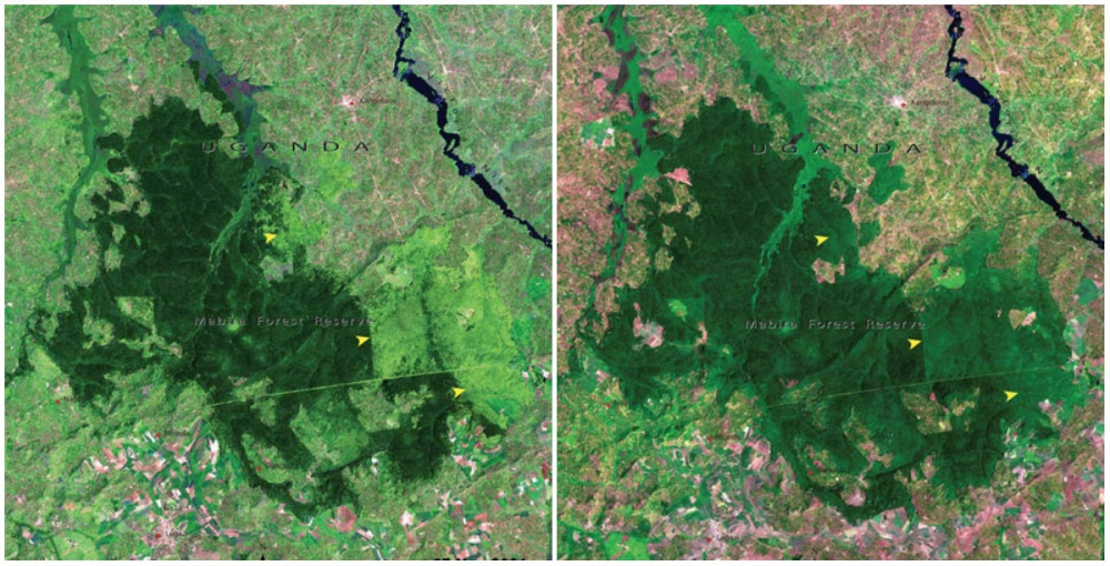 AD-Earth-Then-And-Now-Dramatic-Changes-In-Our-Planet-Revealed-By-Incredible-NASA-Images-10