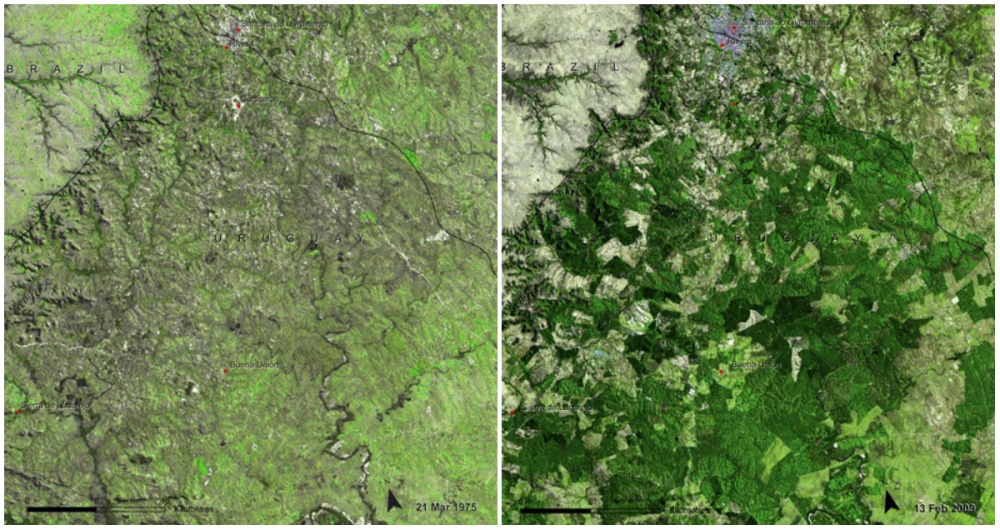 AD-Earth-Then-And-Now-Dramatic-Changes-In-Our-Planet-Revealed-By-Incredible-NASA-Images-16