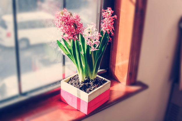 AD-Irresistibly-Spring-DIYs-12