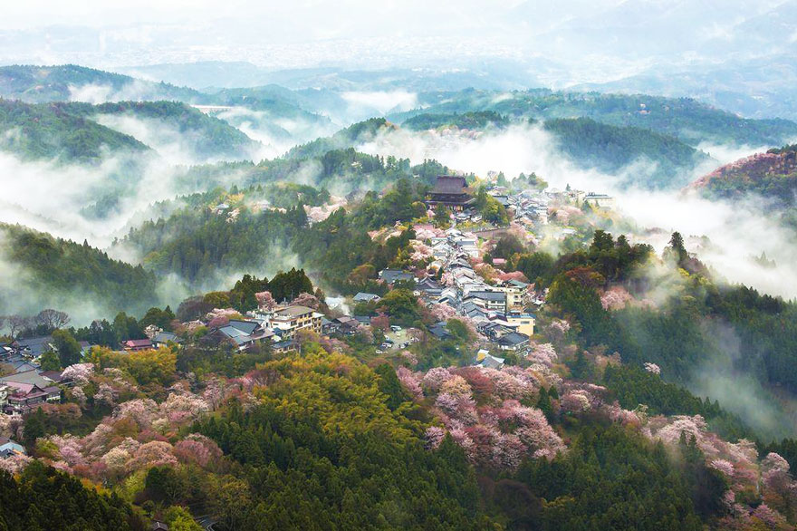 AD-Magical-Pics-Of-Japan's-Cherry-Blossom-By-National-Geographic-03