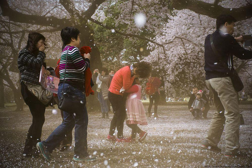AD-Magical-Pics-Of-Japan's-Cherry-Blossom-By-National-Geographic-15