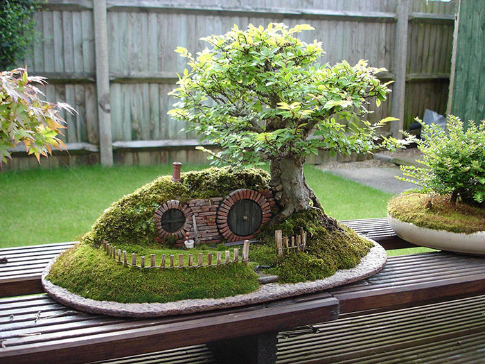 https://cdn.architecturendesign.net/wp-content/uploads/2016/04/AD-Amazing-Bonsai-Trees-08.jpg