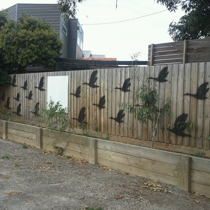 55+ People Who Took Their Backyard Fences To Another Level on Backyard Wall Design id=46017