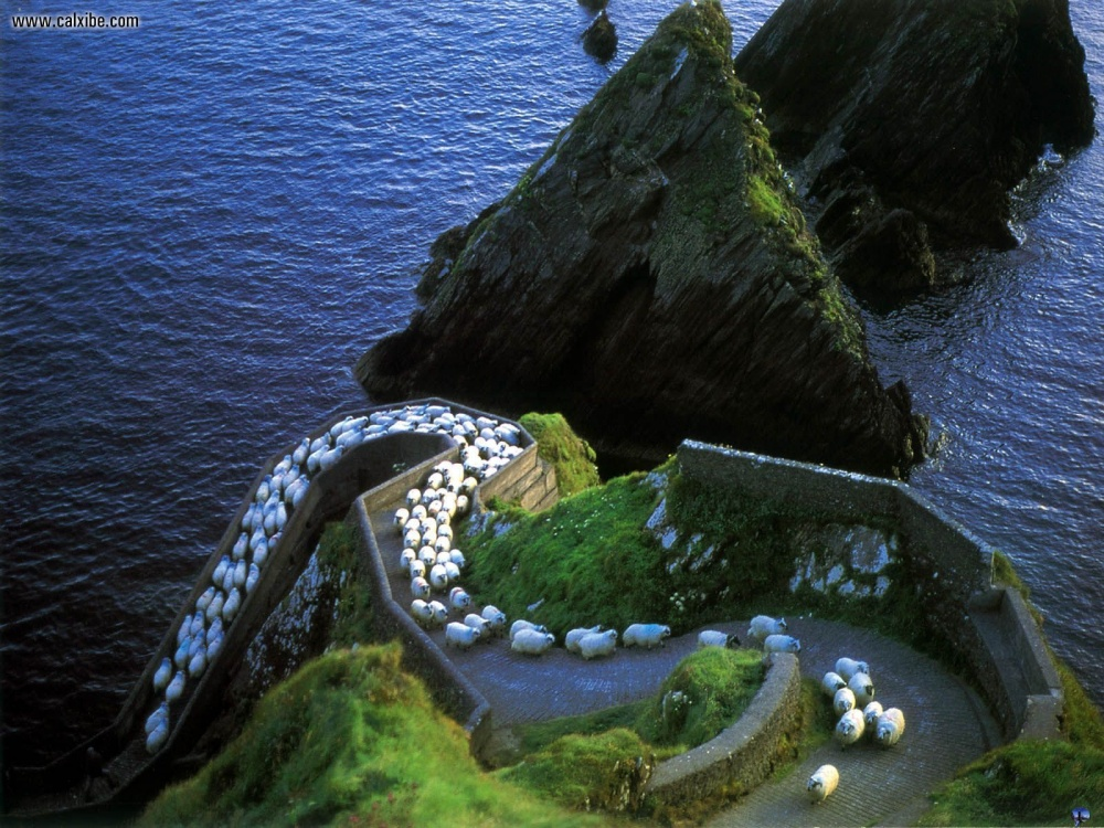 AD-Here's-Why-You-Definitelt-Need-To-Visit-Ireland-13