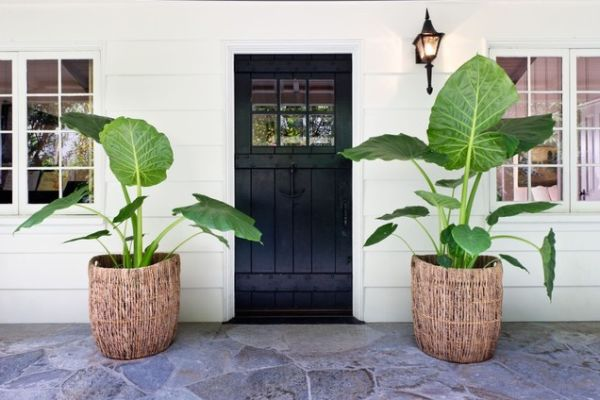 AD-Smart-Design-Front-Door-Planters-18