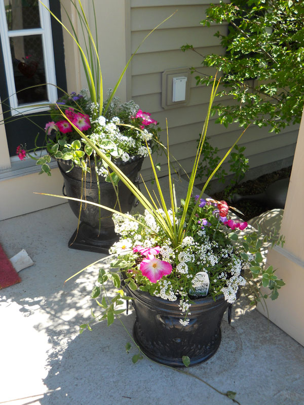 AD-Smart-Design-Front-Door-Planters-41