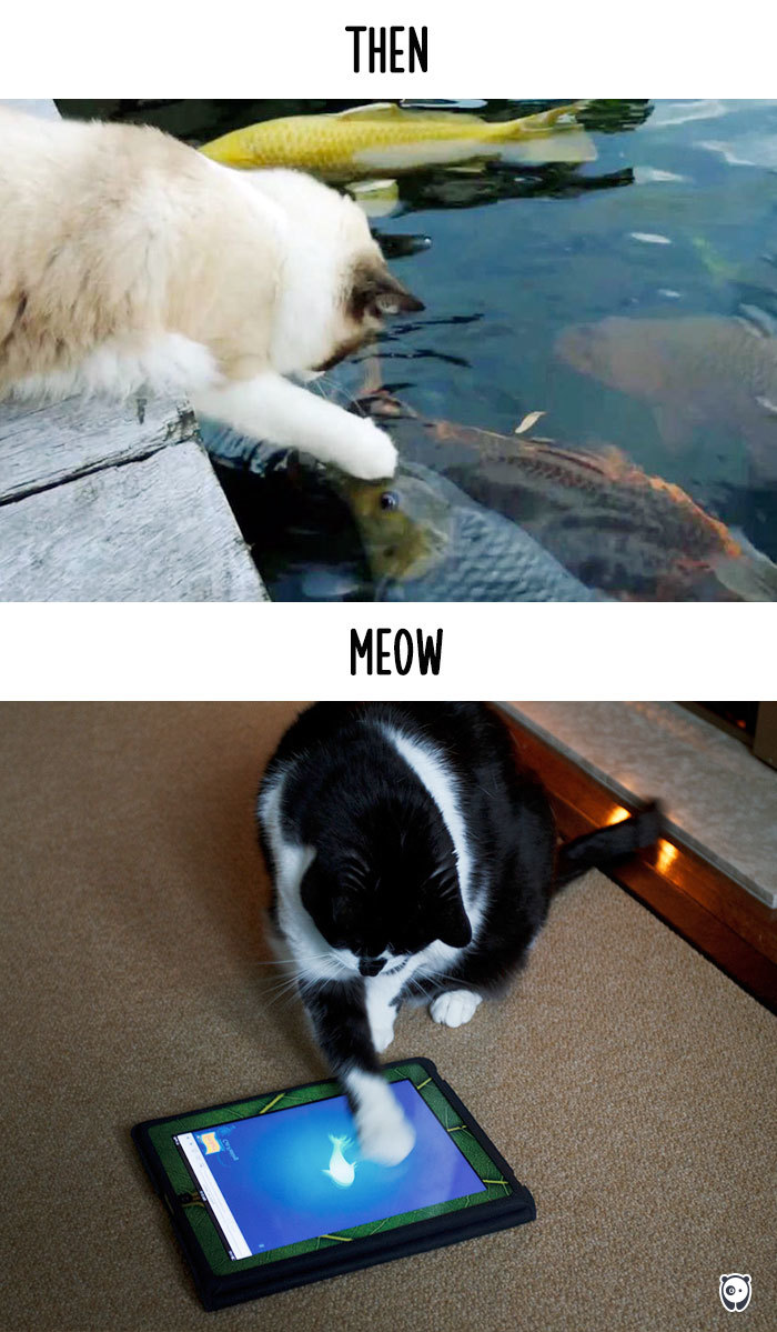 AD-Then-Now-How-Technology-Has-Changed-Cats-Lives-07