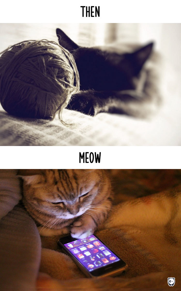 AD-Then-Now-How-Technology-Has-Changed-Cats-Lives-10
