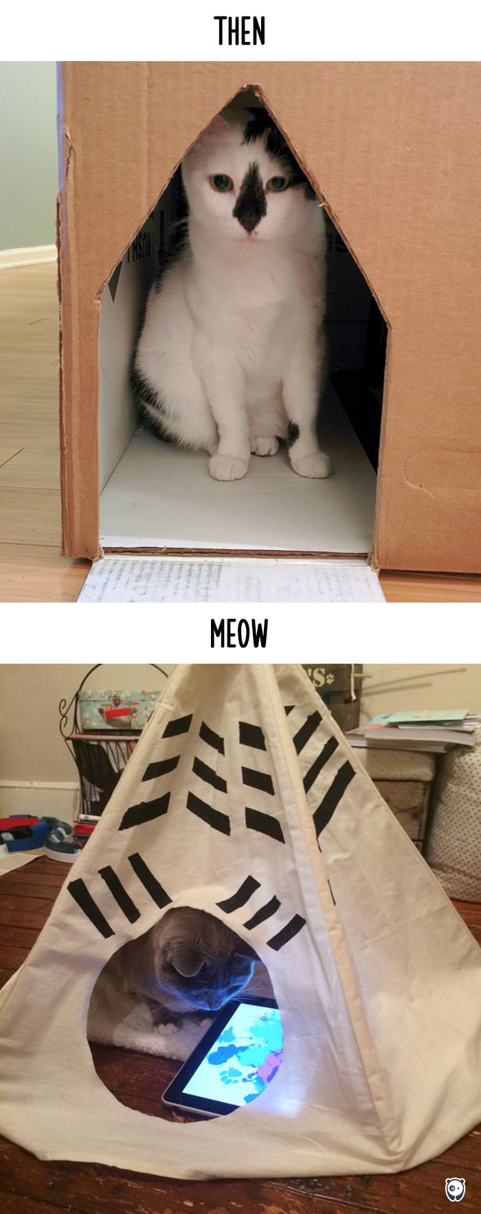 AD-Then-Now-How-Technology-Has-Changed-Cats-Lives-12