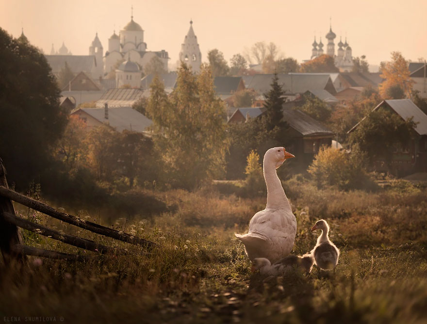 AD-Fairy-Tale-Villages-22