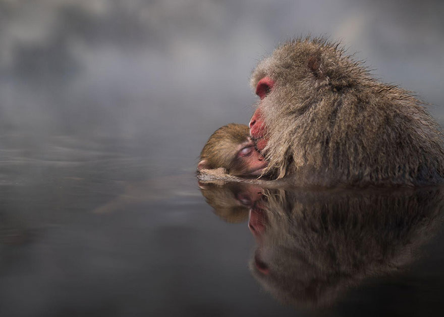 AD-National-Geographic-Travel-Photographer-Of-The-Year-Contest-2016-06