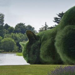 Surrealist Topiary Cats by Richard Saunders