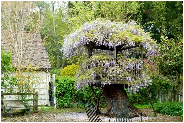 10 absolutely wonderful tree stump landscaping and decor ideas for Hollow tree trunk ideas