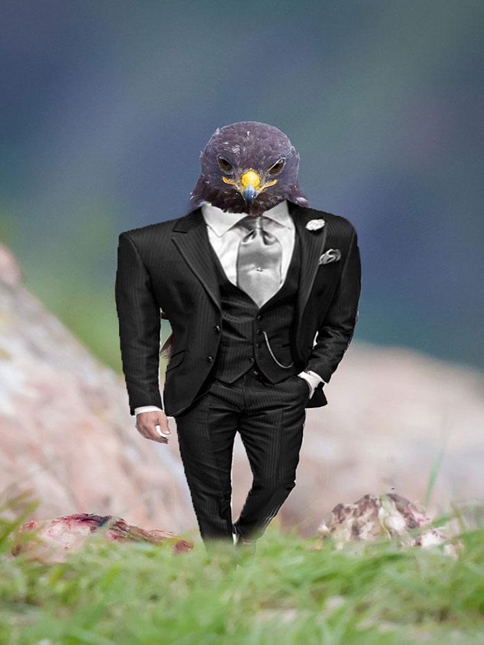 AD-Funny-Hawk-Photoshop-Battle-27