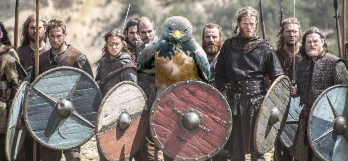 AD-Funny-Hawk-Photoshop-Battle-42