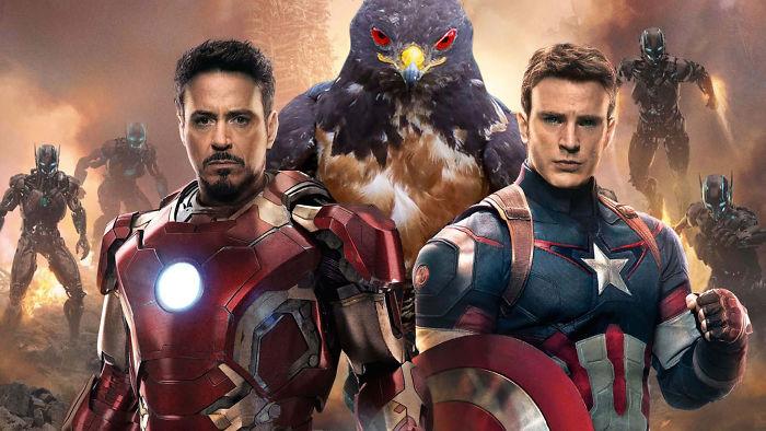AD-Funny-Hawk-Photoshop-Battle-47